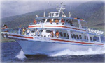 Dream Cruises - Whale Watch Cruise Maui - Prince Kuhio